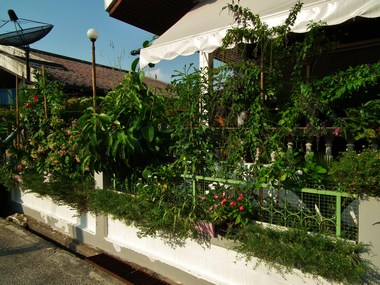 www.thai-dk.dk/penfoto/1/DSCF7448.jpg