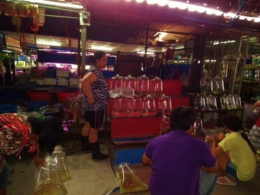 www.thai-dk.dk/penfoto/1/DSCF7699.jpg