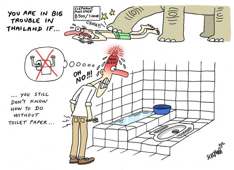 www.thai-dk.dk/uploads/toilet44.jpg